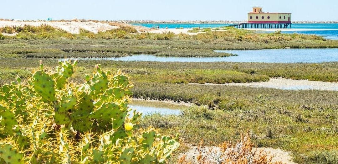 Ria Formosa. What is this, Park or Lagoon?