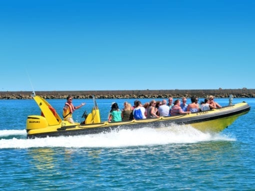 Hop On Hop Off from Faro on Boat in Ria Formosa Islands